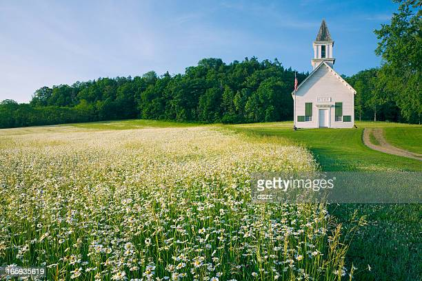 field of daisy wildflowers and old country church