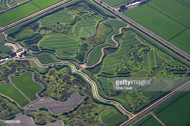 field of dreams - san joaquin valley stock pictures, royalty-free photos & images