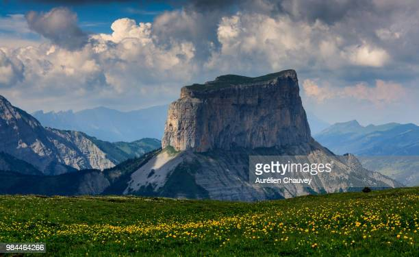 a field of flowers and mountains in france. - auvergne rhône alpes stock pictures, royalty-free photos & images
