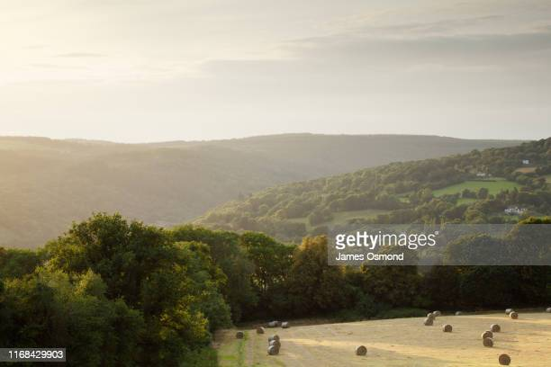 field of hay bales and hedgerows, trees and wooded hills receding into the distance. - valley stock pictures, royalty-free photos & images