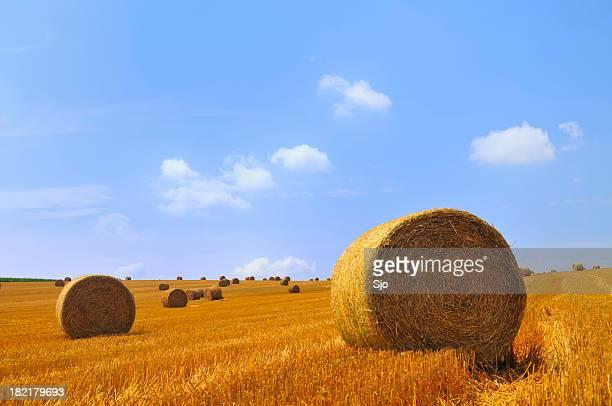 ゴールドのロールの干し草フィールドに軽くクラウディブルースカイ