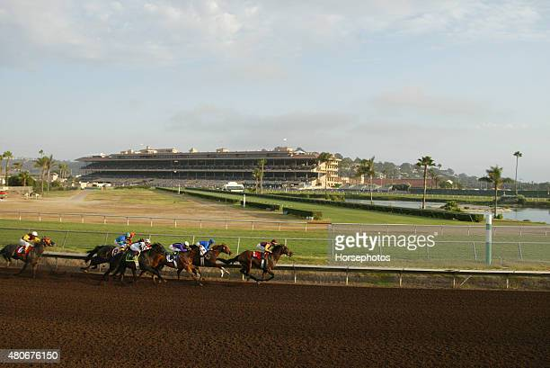 Field of horses race down backstretch at Del Mar Race Track September 8 2004
