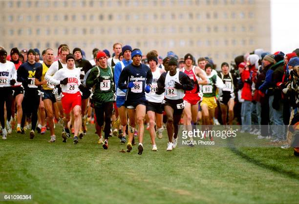 A field of racers head down the path during the Men's Division 1 Cross Country Championship held at the Iowa State University Cross Country course in...