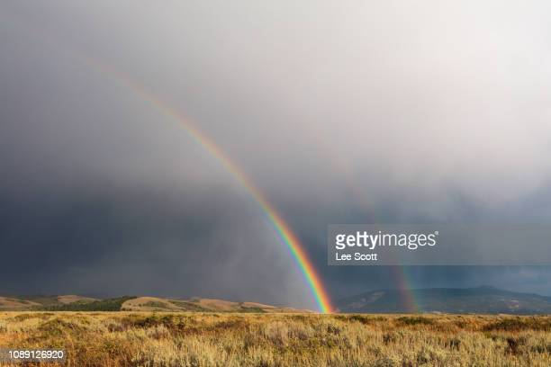 a field of rainbows - rainbow stock pictures, royalty-free photos & images