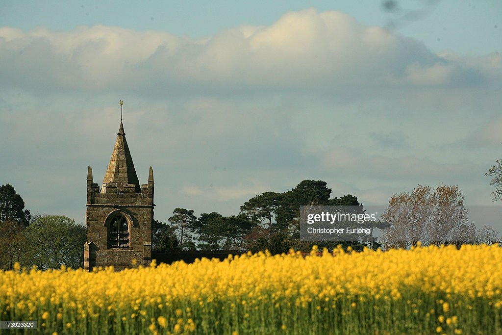 Rapeseed In Bloom Shows Early Signs Of Summer : News Photo
