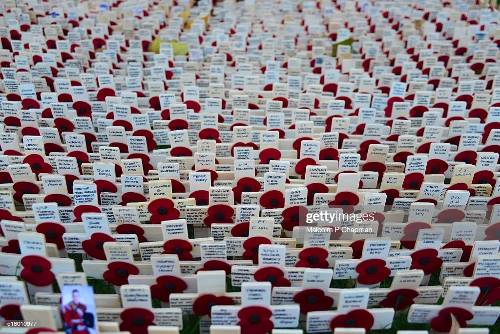 Field of Remembrance, poppy day, Westminster Abbey : Stock Photo