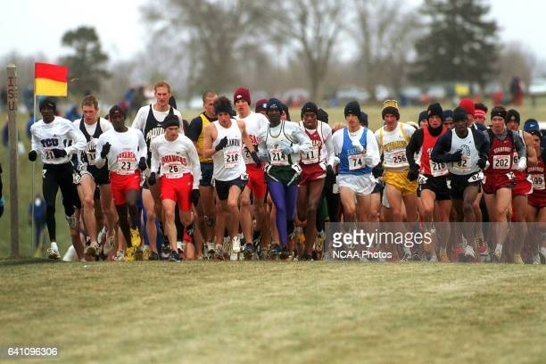 A field of runners cruise along the course during the Men's Division 1 Cross Country Championship held at the Iowa State University Cross Country...