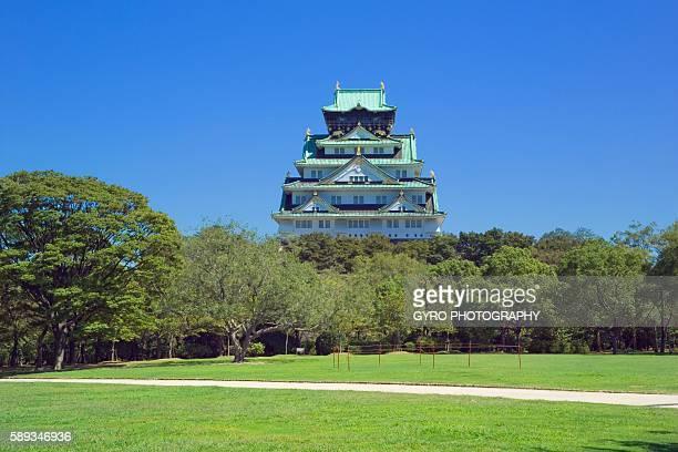 Field of Trees and Osaka Castle. Osaka Prefecture, Japan