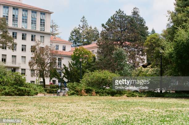 A field of wildflowers in front of academic buildings on the campus of the University of California in Berkeley California July 2 2017