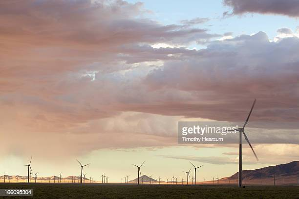 field of wind generators at sunset - timothy hearsum stock pictures, royalty-free photos & images