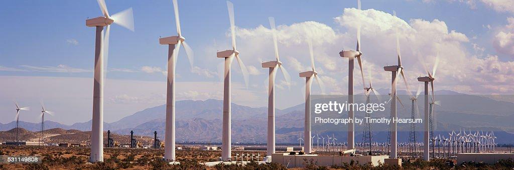 Field of Wind Generators : Stock Photo