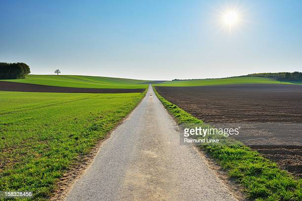 Field Path with Sun