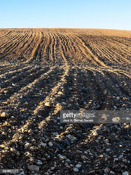 Field ploughed in a wavy area