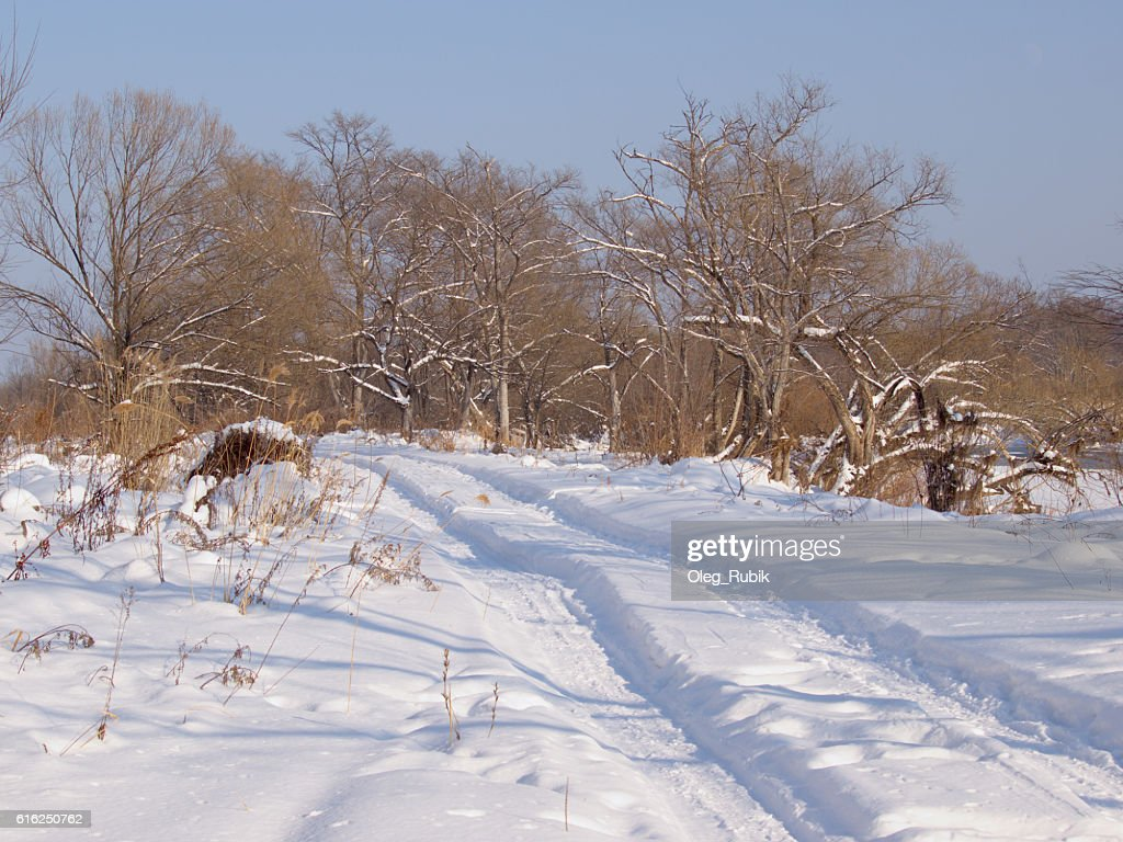 Field road in the winter : Stock Photo