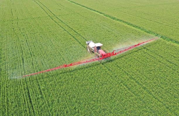 CHN: Farmers Spray Pesticide In Wheat Field