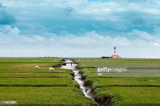 field with distant lighthouse, schleswig holstein, germany - schleswig holstein stock-fotos und bilder