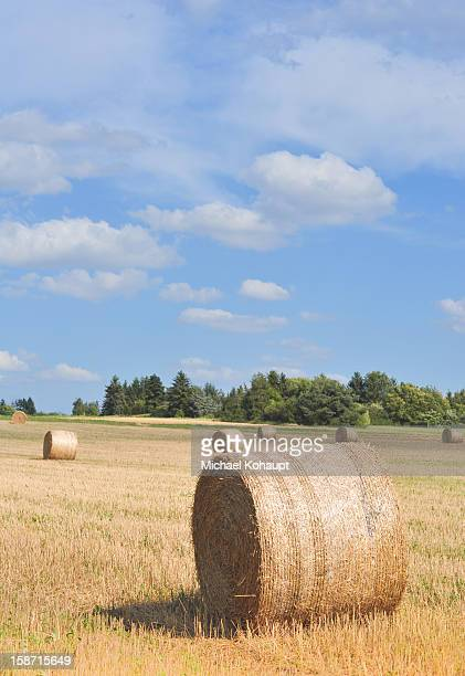 Field with hay bales and wonderful cloudy sky.