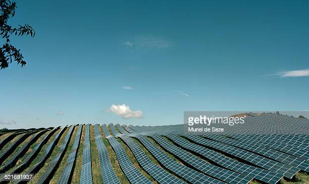 field with solar panels - sustainable energy stock pictures, royalty-free photos & images
