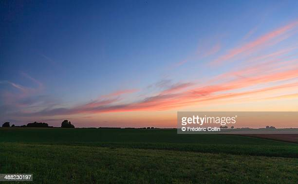 Fields and trees in the far during colorful sunset