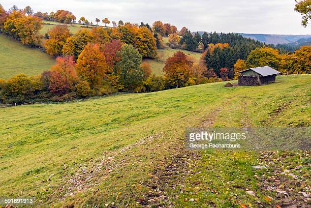 Fields in autumn with cabin