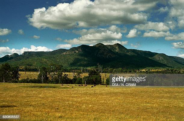 Fields in front of Mount Walsh in the Great Dividing Range New South Wales Australia