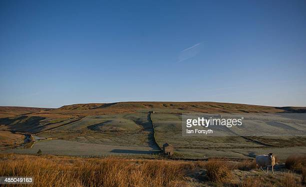 Fields next to Ravenseat farm belonging to Yorkshire shepherdess Amanda Owen are covered in frost at first light on April 15 2014 near Kirkby Stephen...