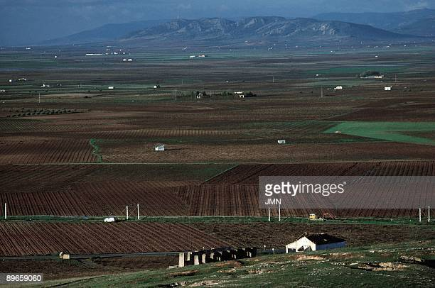 Fields of Alcazar de San Juan Ciudad Real Panoramic of the extensive plain of La Mancha To the bottom some isolated hills