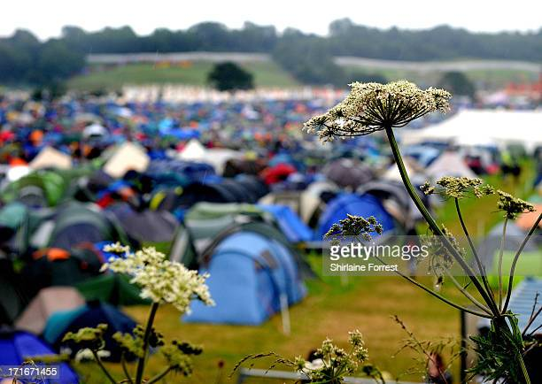 Fields of camping tents during day 1 of the 2013 Glastonbury Festival at Worthy Farm on June 27 2013 in Glastonbury England