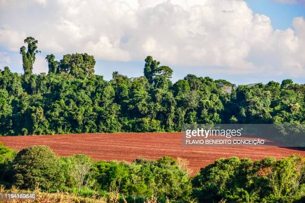 fields of farms with soil prepared for planting in the region of londrina in the state of paraná in brazil, site of purple earth with high grain yield. - 南アメリカ ストックフォトと画像