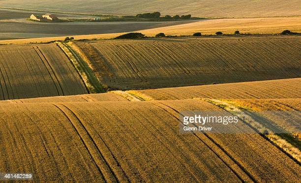 fields of saltdean - saltdean stock pictures, royalty-free photos & images