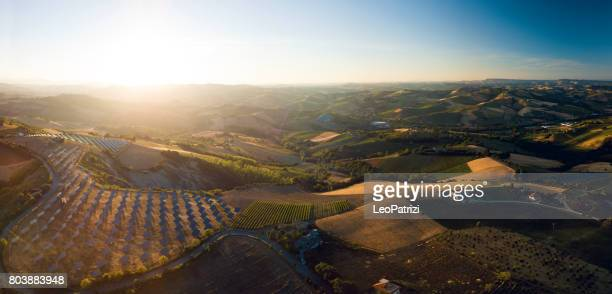 Fields of solar panels on the green hills in spring