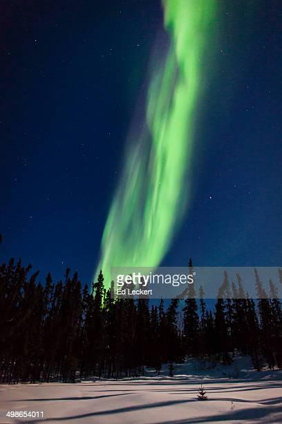 fiery aurora borealis - leckert stock pictures, royalty-free photos & images