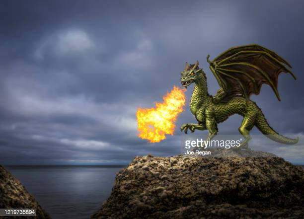 2 194 Fantasy Dragon Photos And Premium High Res Pictures Getty Images