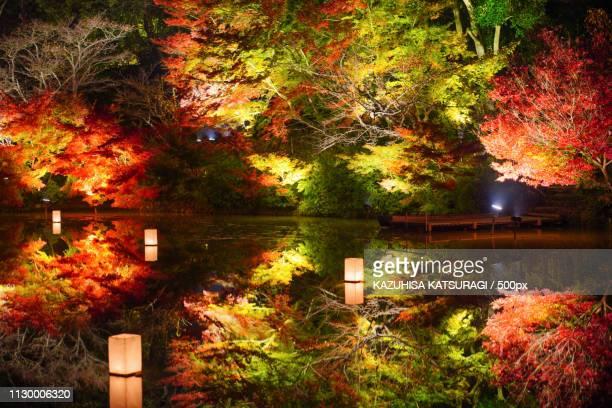 Fiery Fall Colors At Mifuneyama Rakuen