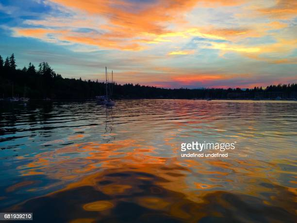 fiery sunset - bainbridge island stock pictures, royalty-free photos & images