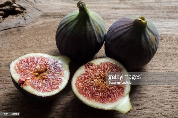 fig - susanne ludwig stock pictures, royalty-free photos & images