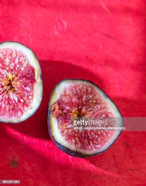 Fig sections.