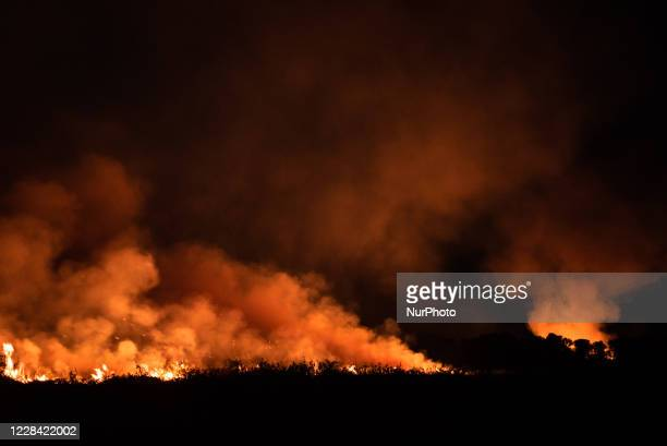 Fight against wildfire out of control at Rosario farm in Pocone, Mato Grosso, Brazil, on August 23, 2020. The fire would actually be controlled at...