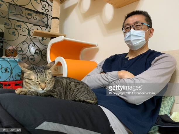fight coronavirus with pet - cat face mask stock pictures, royalty-free photos & images