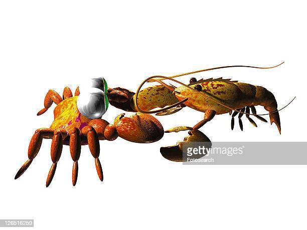 fight, cute, cartoon, 3D, animal, lobster