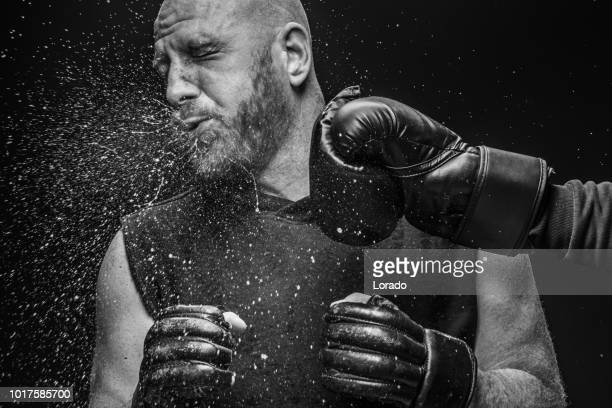 mma fighter boxing knockout - combat sport stock pictures, royalty-free photos & images
