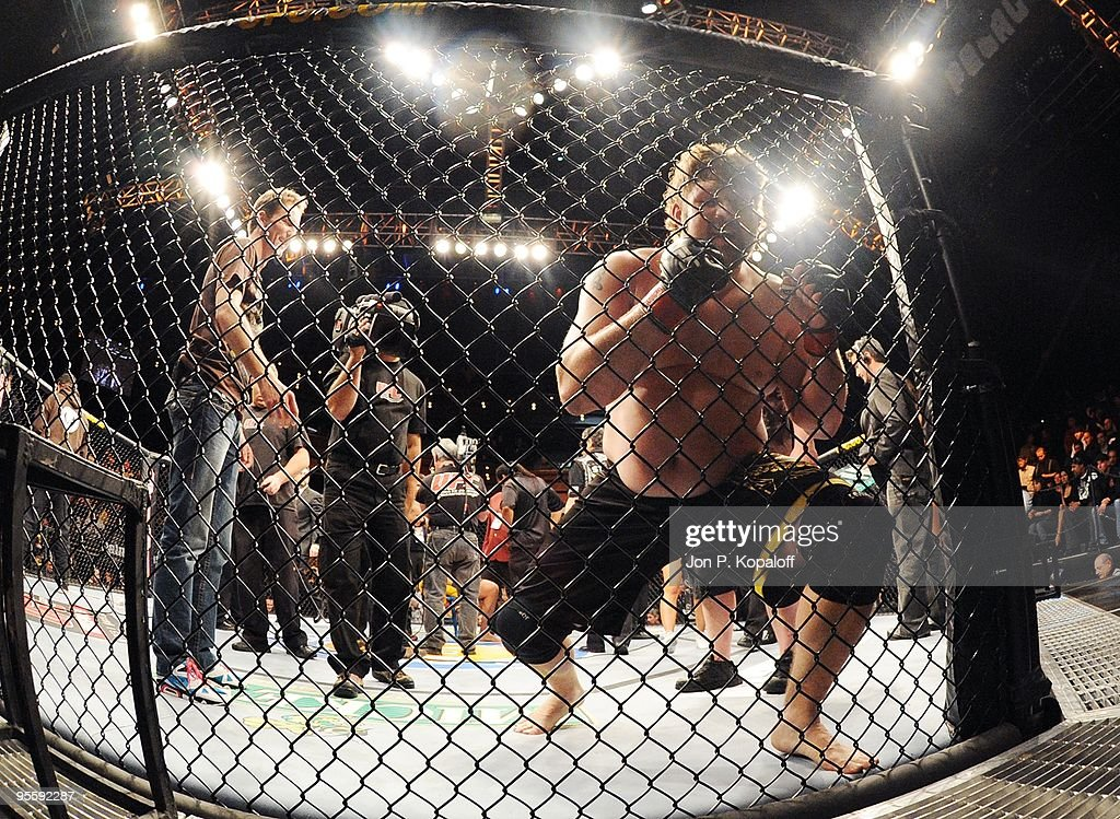 UFC fighter Roy Nelson (pictured) celebrates after knocking out UFC fighter Brendan Schaub during their Heavyweight Finale fight at The Ultimate Fighter Season 10 Finale on December 5, 2009 in Las Vegas, Nevada.