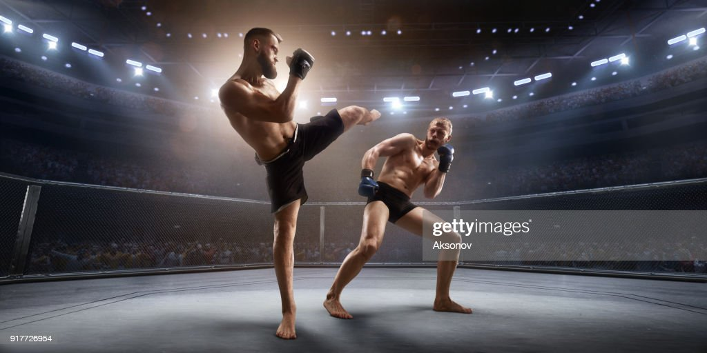 Lutadores de MMA no ringue de boxe profissional : Foto de stock