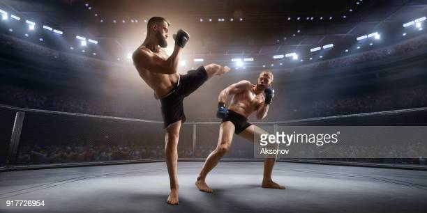 mma fighters in professional boxing ring - mixed martial arts stock pictures, royalty-free photos & images