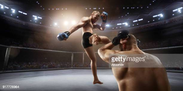 MMA fighters in professional boxing ring