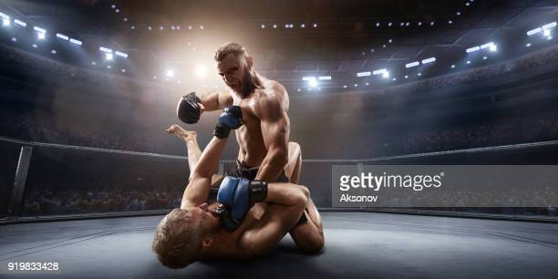 mma vechters in professionele boksring - mixed martial arts stockfoto's en -beelden