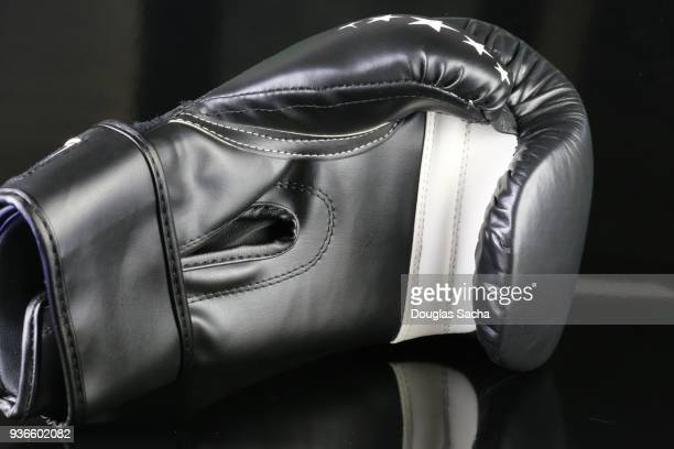Fighters padded Glove on a black background