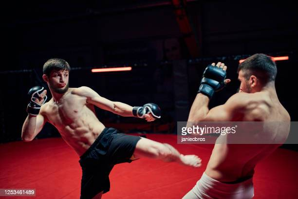 mma fighters throw punches in octagon. high kick - mixed martial arts stock pictures, royalty-free photos & images