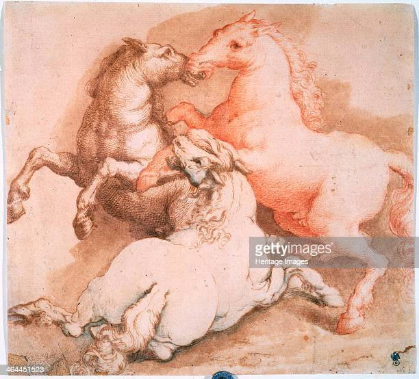'Fighting Horses' c15501600 Found in the collection of the State A Pushkin Museum of Fine Arts Moscow