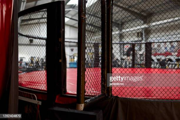 fighting stage side view. close up on arena entrance - mixed martial arts stock pictures, royalty-free photos & images